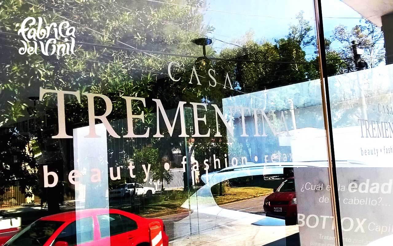 Logotipo Cortado en Vinilo Esmerilado aplicado sobre cristal ...